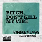 Bitch Don't Kill My Vibe (Remix)