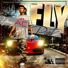 F.L.Y. 2 (Hosted by DJ ill Will)