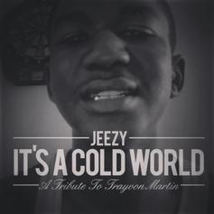 It's A Cold World (Trayvon Tribute)
