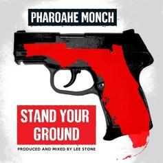 Stand Your Ground (Rough)