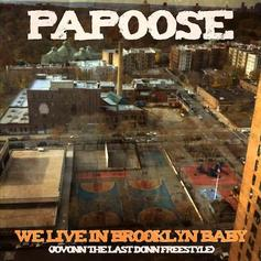 We Live In Brooklyn Baby