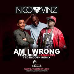Am I Wrong (Tedsmooth Remix)