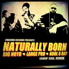 Naturally Born (Cookin' Soul Remix)