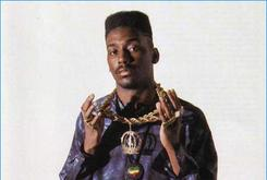 """Old School Music: A Look At Big Daddy Kane's """"Aint No Half-Steppin"""""""