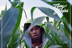 """Tracklist Revealed For Casey Veggies' """"Life Changes"""""""