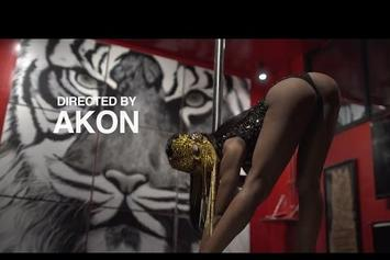 "DJ Whoo Kid Feat. Akon & O.T. Genasis ""Ride Daddy"" Video"