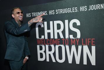 """Chris Brown's Documentary """"Welcome To My Life"""" Premieres"""