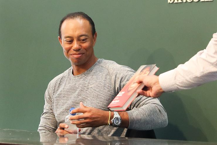 Tiger Wood Drink Driving